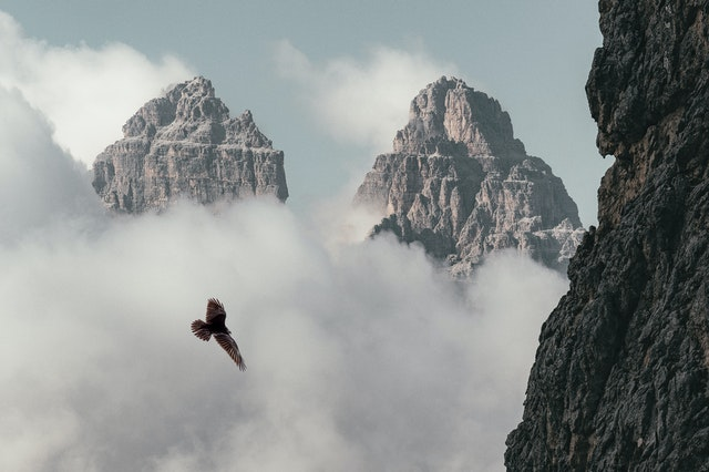 Can Kung Fu Masters Really Fly?